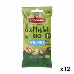Noberasco - I Misti Bio Wellness 40gx12